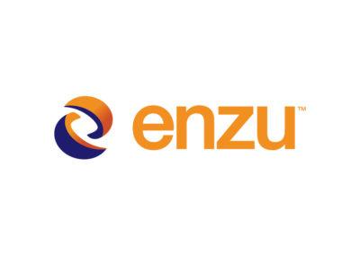 enzu1