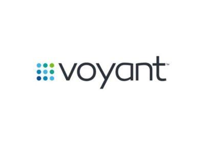 Voyant Logo