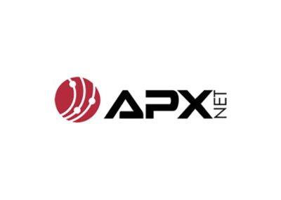 APX Net Logo