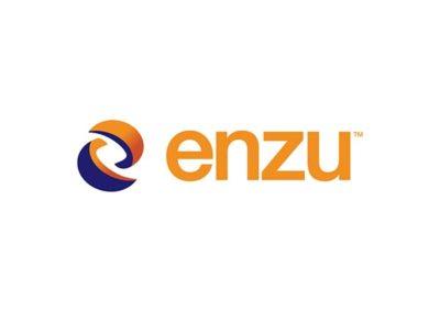 enzu Logo